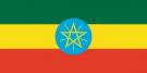 Перевод на амхарский язык